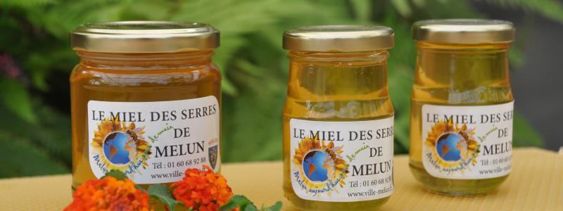 Pot de miel de Melun
